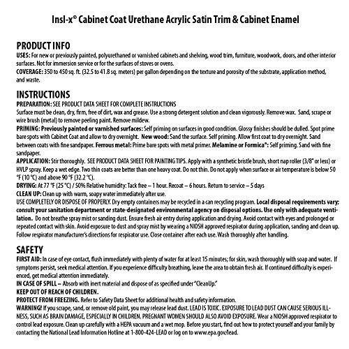 Amazon.com: INSL-X CC560109A-01 Cabinet Coat Enamel, Semi-Gloss Paint 1 Gallon White: Home Improvement