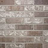 Colonial Collection Little Cottonwood Thin Brick - Case of 50 - 7.3 SF
