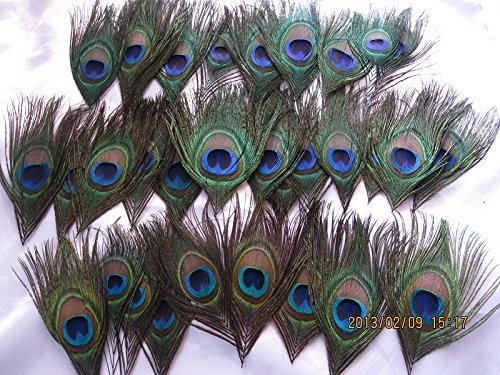 Hand Trimmed Peacock Feather Romantic Reception,table Decor,Charming Peacock  Feather