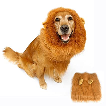 Lion Mane Costume for Dog Bukm cute Lion Wig hats for Medium to Large Sized  sc 1 st  Amazon.com & Amazon.com : Lion Mane Costume for Dog Bukm cute Lion Wig hats for ...