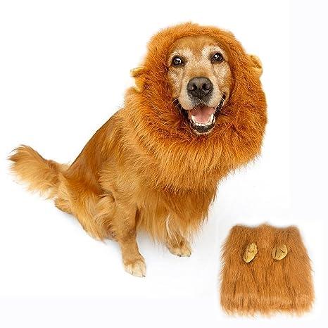 Amazon.com: Disfraz de león Mane para perro, bukm Cute Lion ...