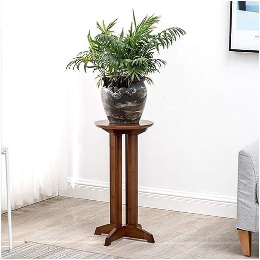 Los estantes de madera de la planta planta de bambú del jardín de ...
