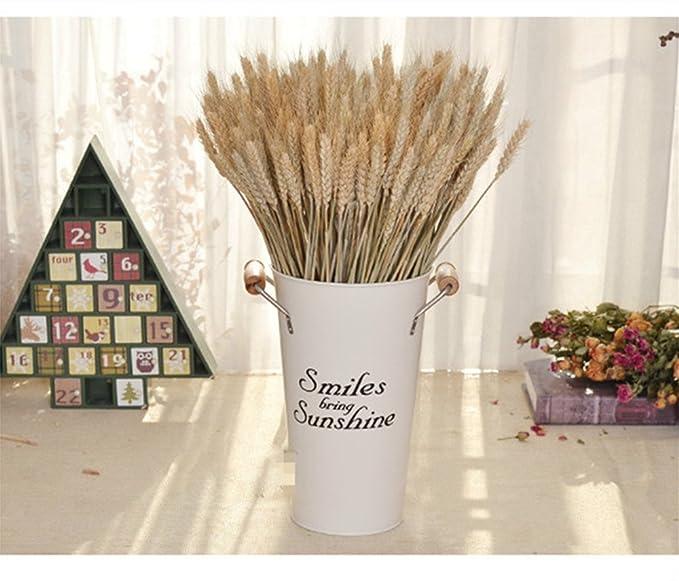 Ramo de flores de espigas de trigo seco natural, arreglo para decoración del hogar, 45 cm de largo, color blanco/beige: Amazon.es: Hogar