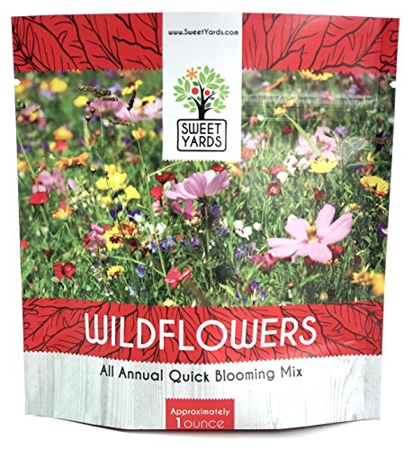 Wildflower Seeds Annual Quick Blooming Mix - Large 1 Ounce Packet Over 7,500 Open Pollinated Seeds (1) - Growing Wildflower