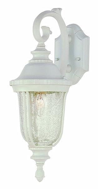 Trans Globe Lighting 4020 BK Outdoor Chessie 20u0026quot; Wall Lantern, ...