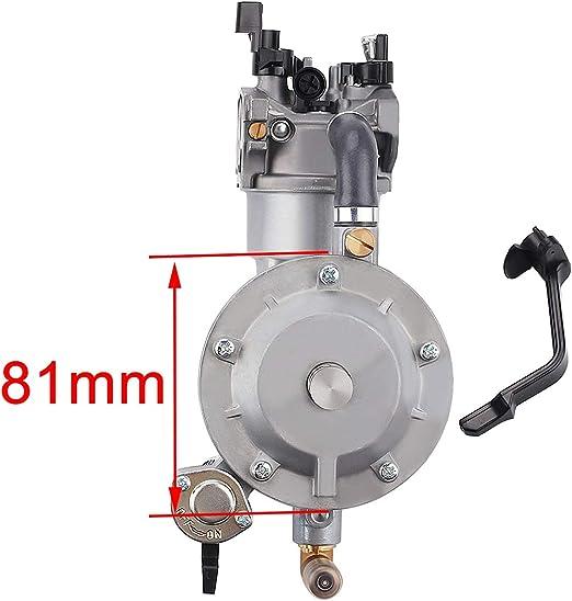 WE-WHLL LPG 168 Carburador Doble Combustible LPG NG Kit de conversi/ón para 2KW 3KW 168F 170F