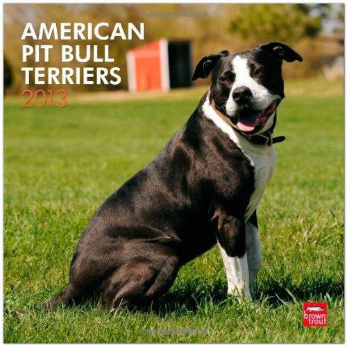 American Pit Bull Terriers 2013 - Pit Bulls - Original BrownTrout-Kalender
