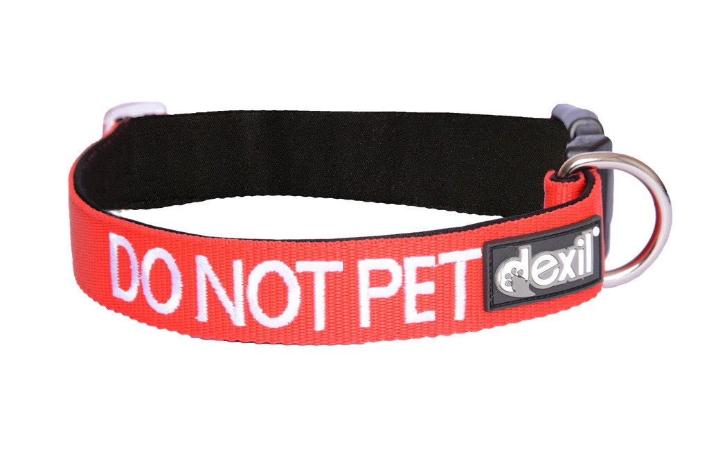 DO NOT PET Red Color Coded S-M L-XL Neoprene Padded Dog Collar PREVENTS Accidents By Warning Others of Your Dog in Advance (L-XL)