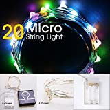 LIDORE Micro LED 20 Multi color String Lights with Timer, Battery Operated on 7.87ft Long Silver Color Ultra Thin Copper Wire