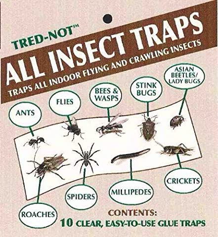 10 Pk Millipede, Centipede, Sow Bug, Pill Bug, All INSECT STICKY TRAP (Ant Glue Trap)