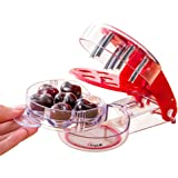 Amytalk Cherry Pitter - It Multiple Cherrystone Remover - 6 Cherries