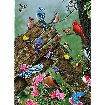 Cobblehill 57190 Mo 1000 Uccelli Di Bosco Puzzle Vari