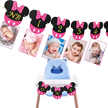 Minnie Mouse Baby Photo Banner First Year Monthly For 1ST
