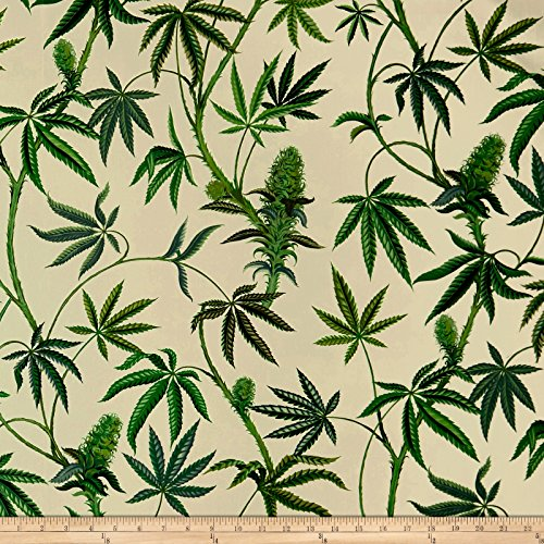 - Alexander Henry 0573465 Cannabis Sativa Canvas Light Tea Fabric by The Yard,