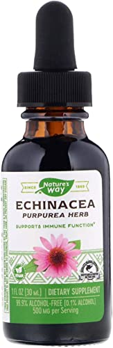 Nature s Way Echinacea – 1 fl oz