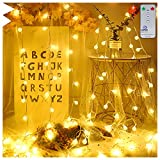 Ollny Globe Fairy String Lights Outdoor Christmas String Garden Indoor Bedroom Party Festoon 8 Lights Modes with Remote Timer 10M 100 LEDs Warm White Pl