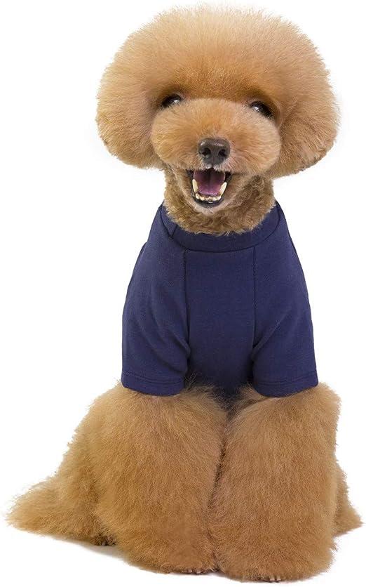 Camisetas para Cachorro de Perro Gato Pequeño/Camisa Básica para Perros Ropa - Colores Puros Azul Marino Rojo Vino Amarillo Moderno Solo para Cachorros de Perros Gatos Pequeños - Peso 1.2-9,0 kg: Amazon.es: