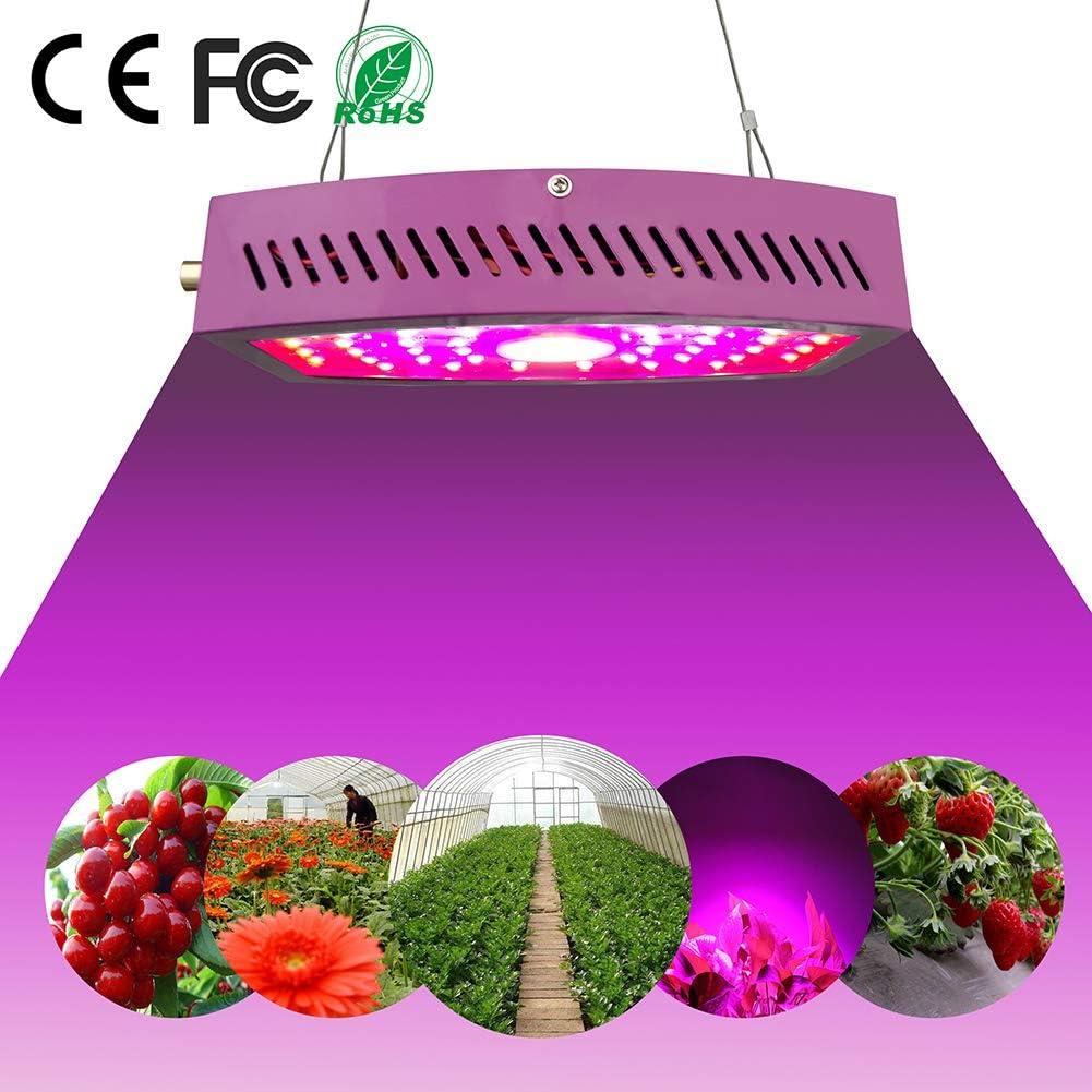 ZHICHUAN 1100W LED Cultivo Interior, Lámpara De Crecimiento Vegetal LED, Lámpara De Espectro Completo, Lámpara Roja Y Azul, Lámpara De Planta De Jardín Hidropónico De Invernadero [Grado A]