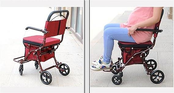 Amazon.com: Carro de la compra Deluxe ligero para ancianos ...