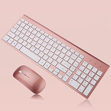 SINCERE@ Ultrafinas de negocios de moda teclado 2.4G ratón inalámbrico y teclado rosas para una variedad de ordenador Tablet PC (Color : Rose Gold)