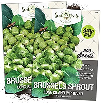 Long Island Improved Heirloom Fresh Non GMO USA! Details about  /Brussels Sprout 500 Seeds