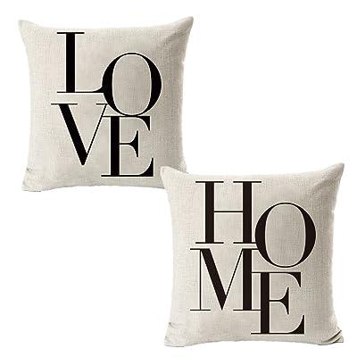 Throw Pillow Cover Case