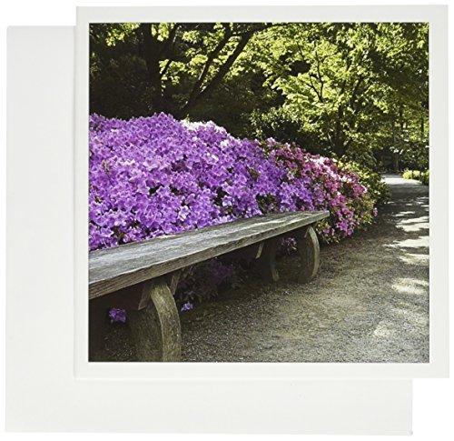 3dRose banco junto sendero en jardín japonés–us48jda0113–Janell Davidson–Tarjetas de felicitación,...