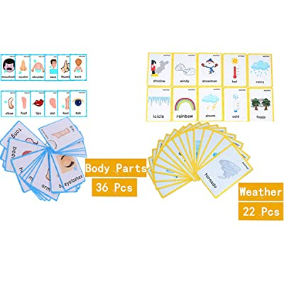 Set of(Body Parts+Weather) Flash Cards for Toddlers | Kids Learning Montessori Pocket Cards Toys | Perfect for Pre-K Decorations Background Wall Stickers, Teacher/Autism Therapists Tools : Office Products
