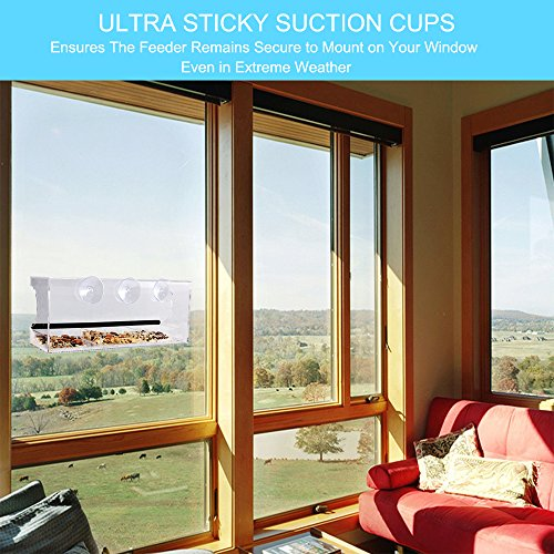 Review Ankway Durable Acrylic Window