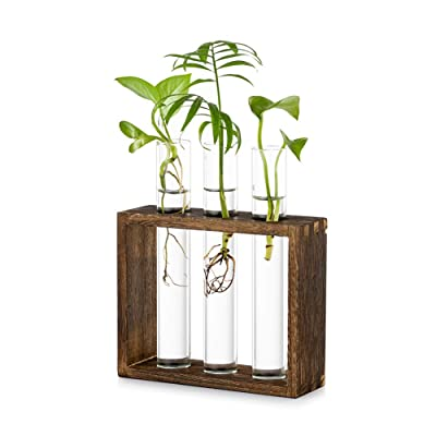 Hanging Vases Bonsai for Home Decoration  Wall-Mounted Wooden Solid Vase