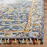 Safavieh Aspen Collection APN116M Handmade Boho