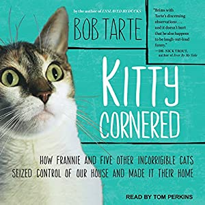 Kitty Cornered Audiobook