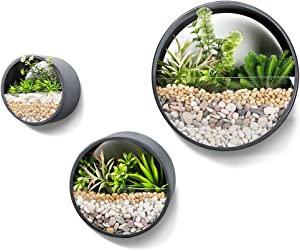 Worth Garden Set of 3 Wall Planters,Modern Indoor Round Glass Succulent Planter Circle Iron Hanging Planter Vase for Faux Plants, Small Cactus, Decor - 4'' Deep - Dark Grey