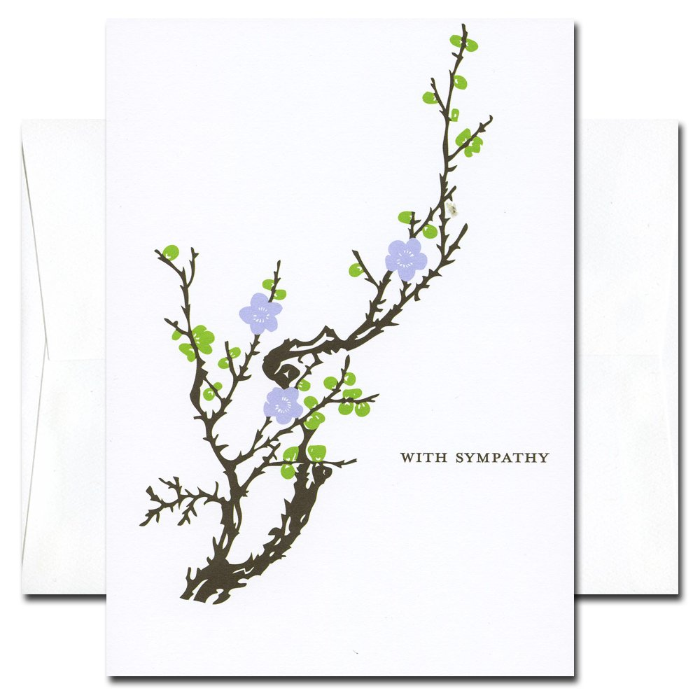 Amazon sympathy cards blooming branch box of 10 cards amazon sympathy cards blooming branch box of 10 cards envelopes blank note cards office products izmirmasajfo