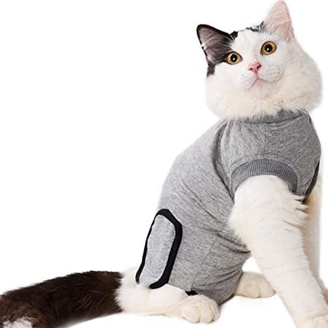 Rstant Recovery Suit - Ropa para Gatos y Perros, Suave y elástica, de algodón, con Rosca para ...