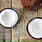 HydroXCell Anti Cellulite Cream Botanic
