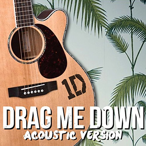 one direction acoustic - 3