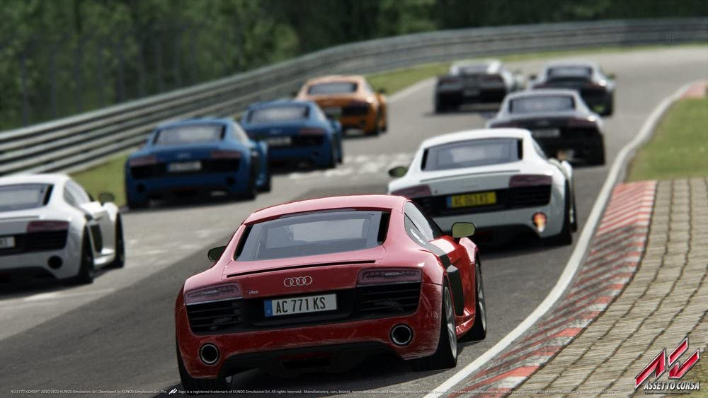 Assetto Corsa - Ultimate Edition [Importación francesa]: Amazon.es ...