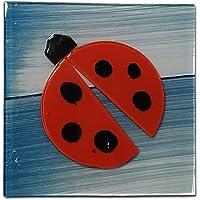Dekoratif Cam Gider Kapağı, Gider Süsü, 10x10 cm(Uğur Böcekli)