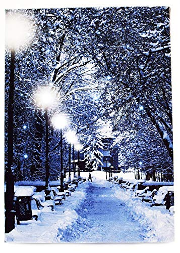 Oak Street Snow Covered Path with Lamp Posts LED Art 8