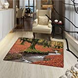 Landscape Bath Mats for bathroom Flowing Stream Colorful Autumn Forest Leaves Gorbea Natural Park Spain Door Mat indoors Bathroom Mats Non Slip 20''x32'' Paprika and Green