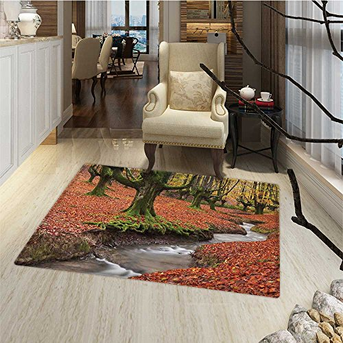 Landscape Bath Mats for bathroom Flowing Stream Colorful Autumn Forest Leaves Gorbea Natural Park Spain Door Mat indoors Bathroom Mats Non Slip 20''x32'' Paprika and Green by Anmaseven