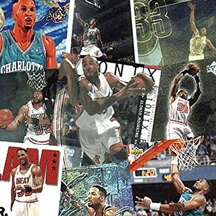 pretty nice 5192d fe93d Amazon.com: New Jersey Nets Alonzo Mourning Trading Card Set ...