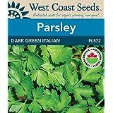 Parsley Seeds - Dark Green Italian Organic