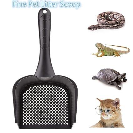 Amazon Com Bestmemories Cat Litter Scoop Reptile Terrarium Sand
