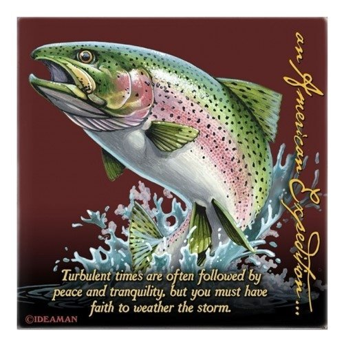 (Rainbow Trout Square Absorbent Stone Coaster)