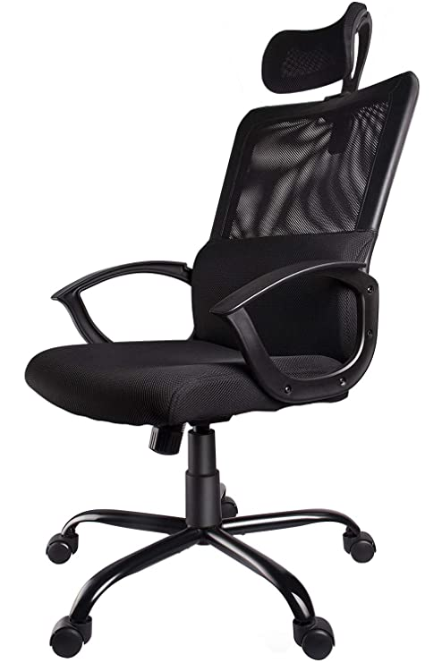 Smugdesk Ergonomic Office Chair Adjustable Headrest Mesh Office Chair Office Desk Chair Computer Task Chair (Black)   2579 by Smugdesk