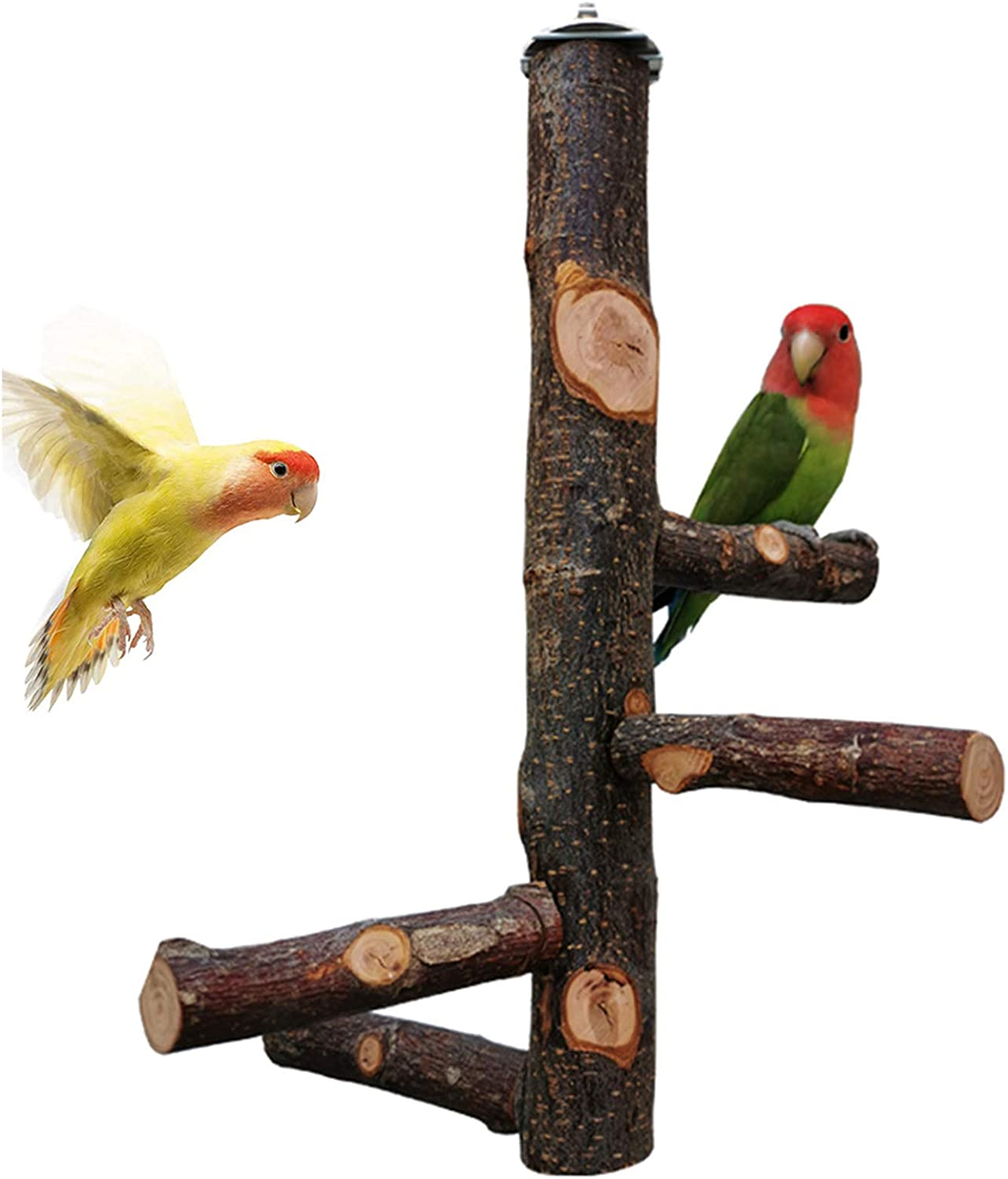 kathson Bird Perch Natural Apple Wood Stand Toy Branch Paw Grinding Standing Climbing Toy Cage Accessories for Small and Medium Parrots,Parakeets,Lovebirds,African Grey,Cockatiels