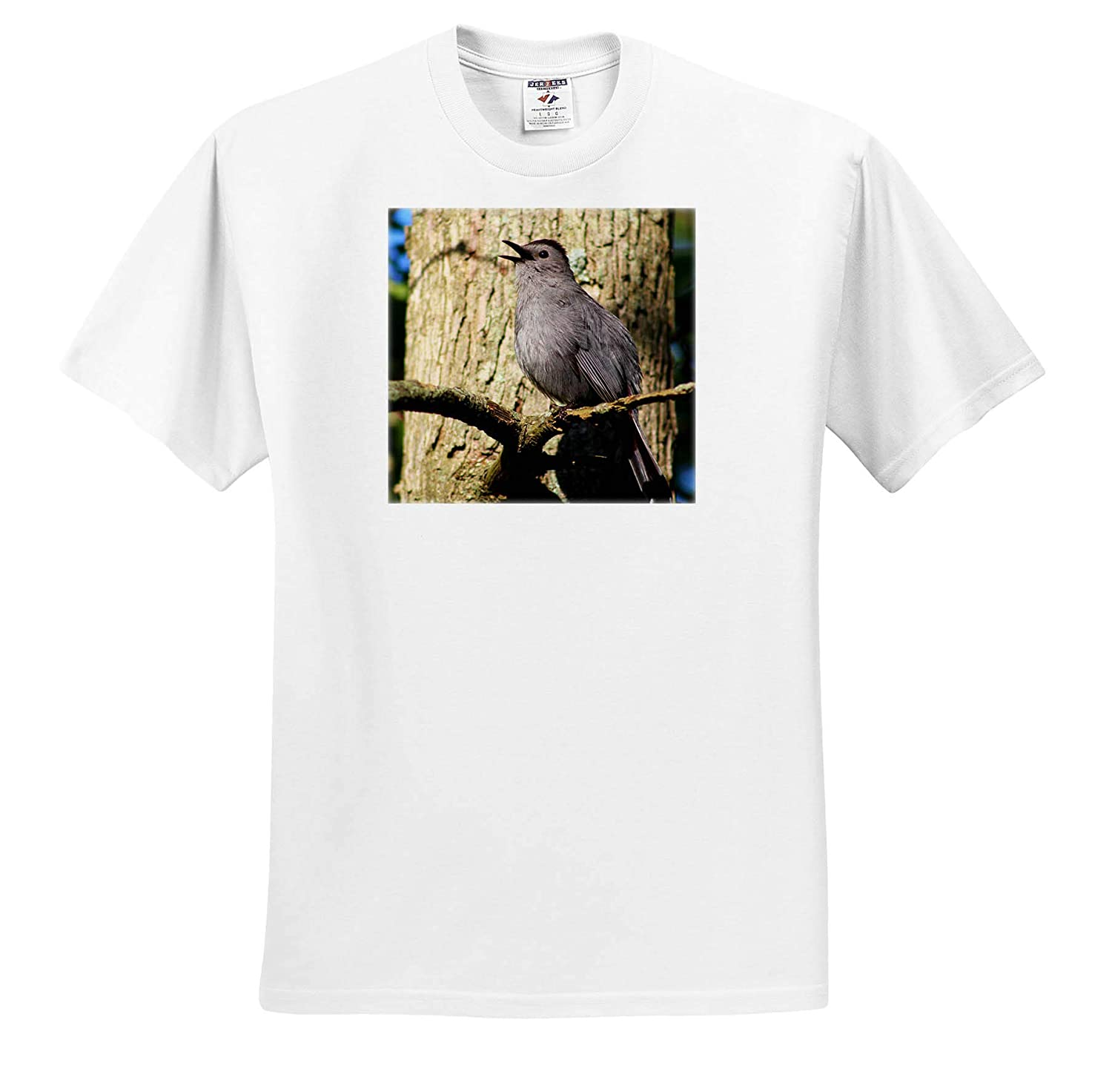 3dRose Stamp City Photograph of a Gray Catbird Singing its Pretty Song on a Tree Branch - T-Shirts Birds