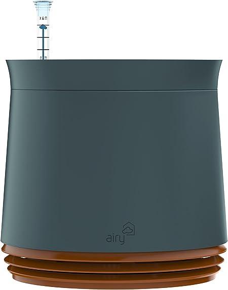 Airy Pot - innovadora Maceta purificadora de Aire 100% eficaz - Purificador de Aire Natural con Plantas de Interior sin Electricidad ni químicos (Honey Mustard): Amazon.es: Hogar